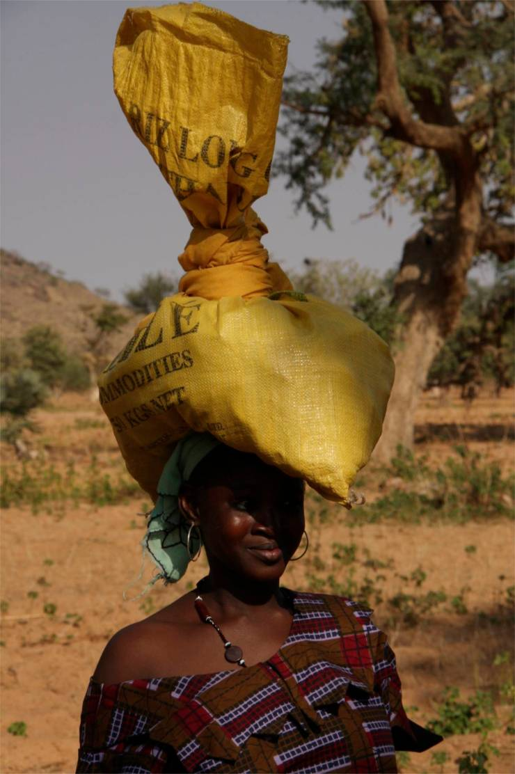 Dogon woman carries a bag on her head, Dogon Country, Mali, Africa