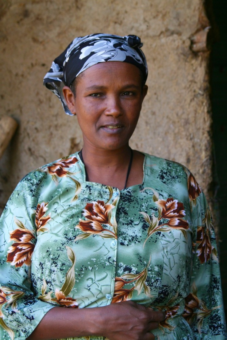 Woman in a village near Blue Nile Falls, Bahir Dar, Ethiopia, Africa