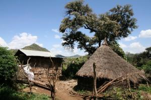 Houses near the Blue Nile Waterfalls, Lake Tana, Bahir Dar, Ethiopia, Africa