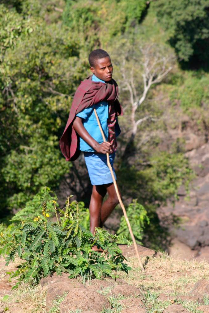 Young boy near the Blue Nile Waterfalls, Lake Tana, Bahir Dar, Ethiopia, Africa