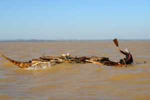 Tankwa traditional boat carrying firewood, Lake Tana, Ethiopia, Africa