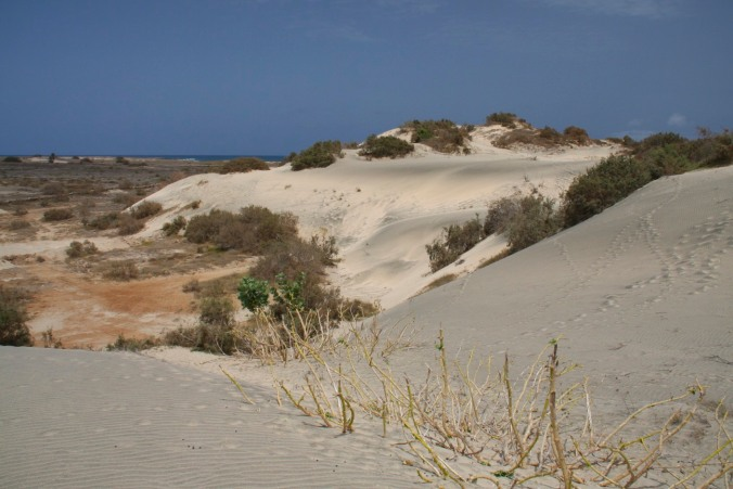 Sand dunes on Maio, Cape Verde, Africa
