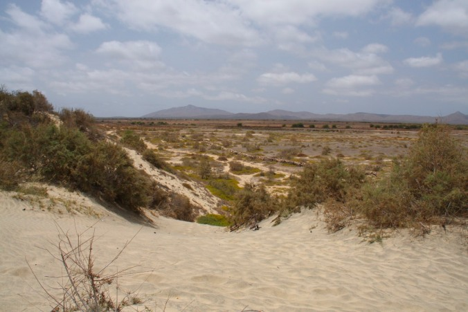 The view inland from sand dunes on Maio, Cape Verde, Africa