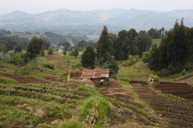Landscape around the Volcanoes National Park, Rwanda, Africa