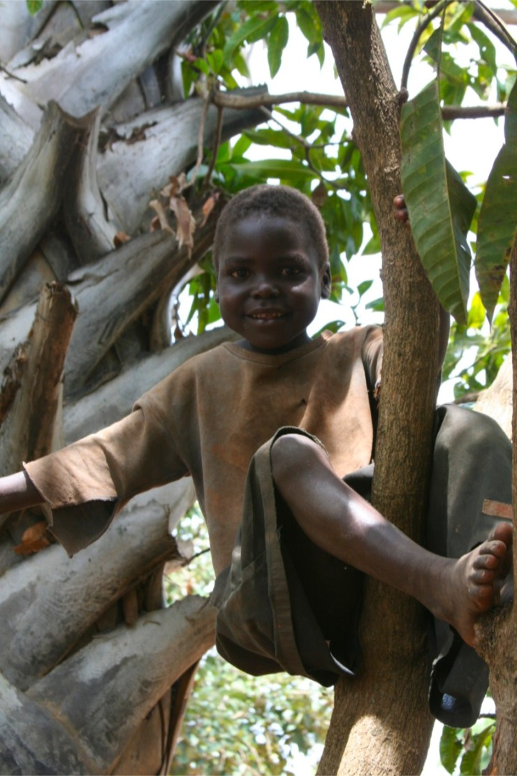 Boy in a tree, Internal Displacement Camp, Gulu, Uganda, Africa