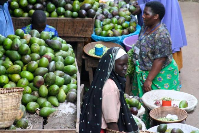 Avocados, Owino Market, Kampala, Uganda, Africa