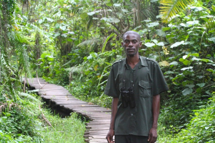 Guide in Bigodi Wetland Sanctuary, Kibale Forest National Park, Uganda, Africa