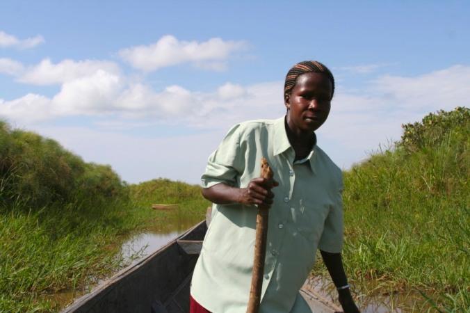 Kasana, Mabamba Wetlands, Lake Victoria, Uganda, Africa