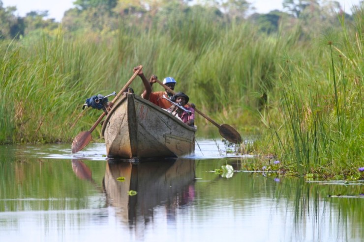 Boat on Mabamba Wetlands, Lake Victoria, Uganda, Africa