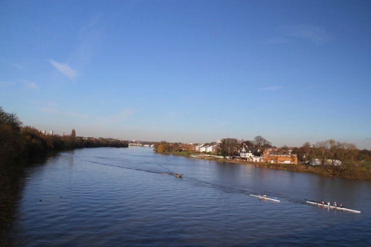 Rowers on the River Thames from Chiswick Bridge, London, England