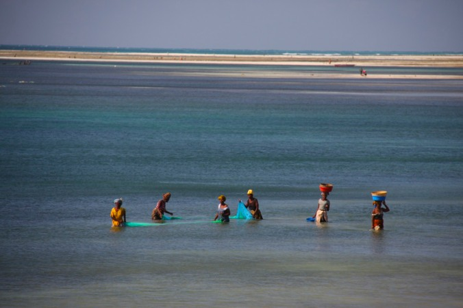 Fishing, Pemba, Mozambique, Africa