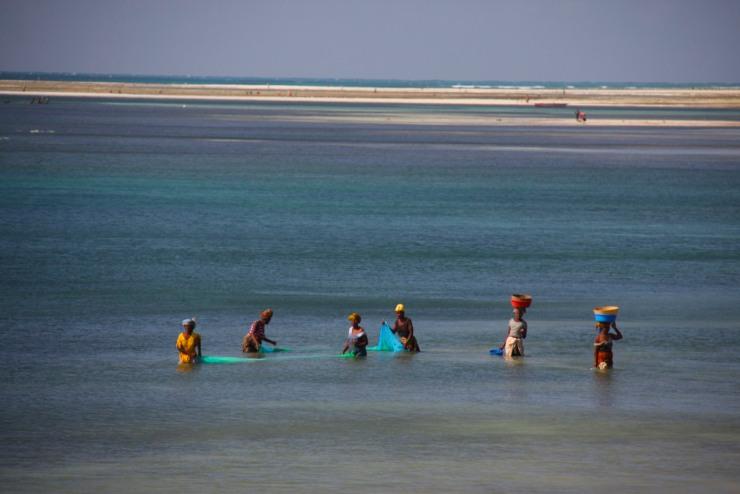 Fishing, Pemba, Mozambique, Africa