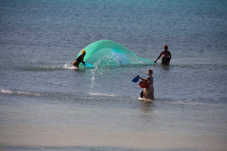 Fishing with water, Pemba, Mozambique, Africa