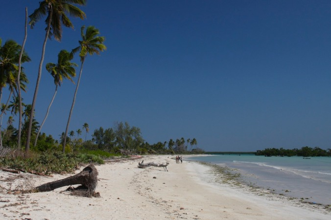 Beach, Quirimba Island, Quirimbas Archipelago, Mozambique, Africa