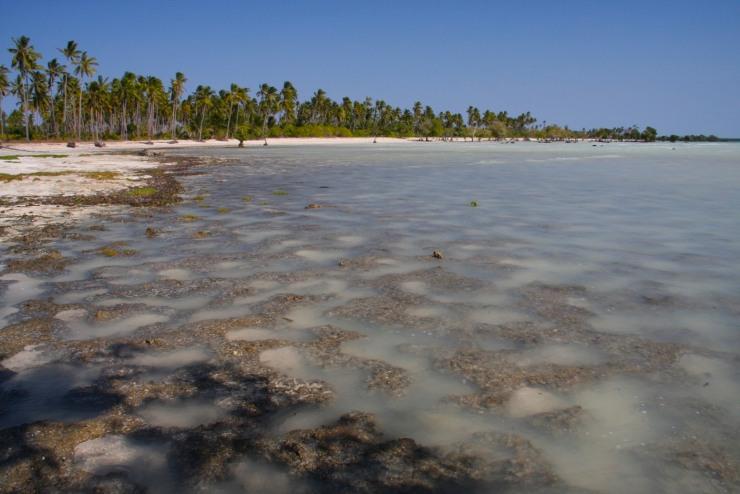 Beach and ocean, Quirimba Island, Mozambique