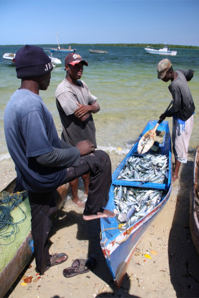 Fish and fishermen, Ibo Island, Mozambique
