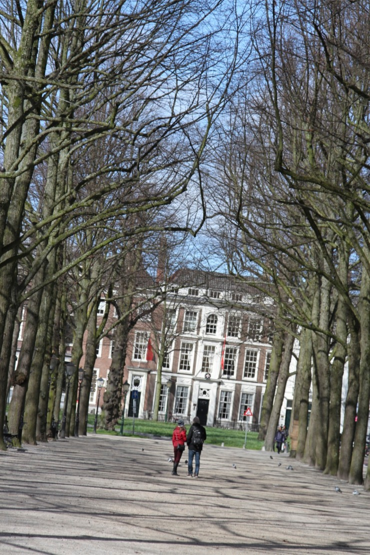 People walk through trees, The Hague, Netherlands