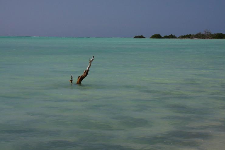 Ocean, Quirimba Island, Quirimbas Archipelago, Mozambique, Africa