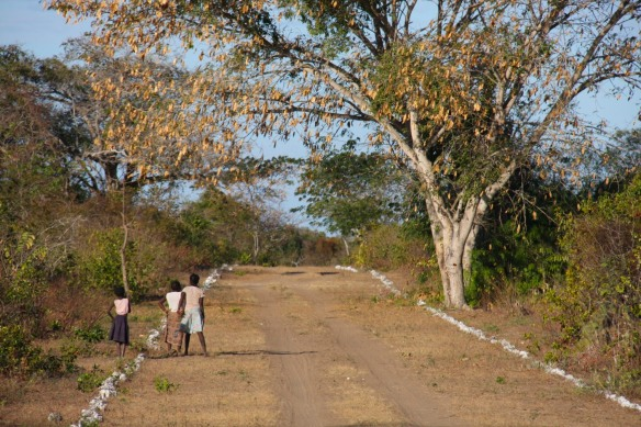 Road to Ibo Island airport, Mozambique, Africa