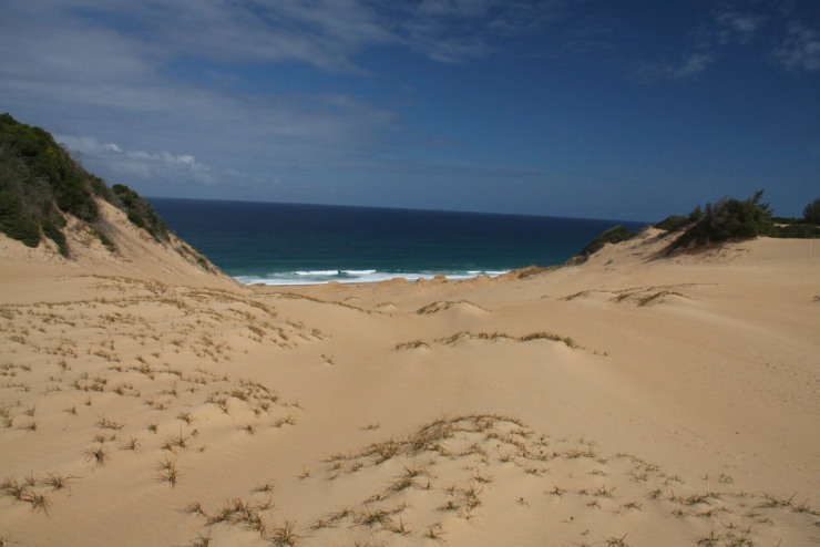 The dunes before the storm, Bilene, Mozambique, Africa