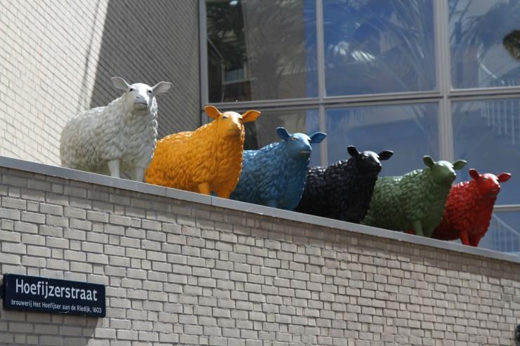 Ominous looking sheep, Dordrecht, Netherlands