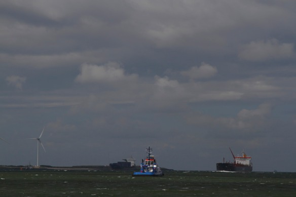 Ships at the Hook of Holland, Netherlands