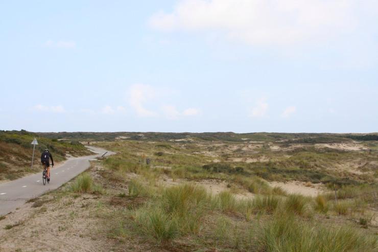 Sand dunes en route to Zandvoort and Haarlem, Netherlands