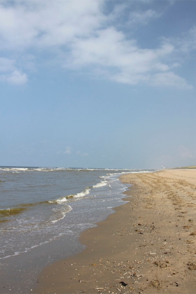 Beach on the North Sea Coast, Netherlands