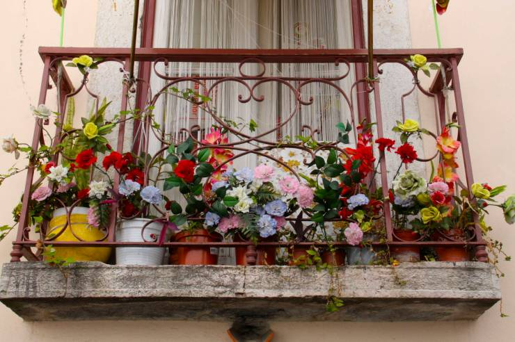 Window with flowers in the Alfama district, Lisbon, Portugal