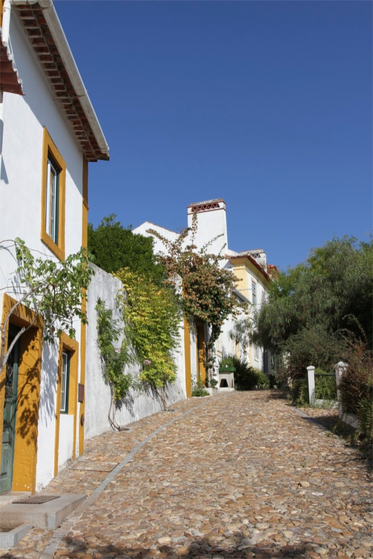 Street in Constancia, Portugal