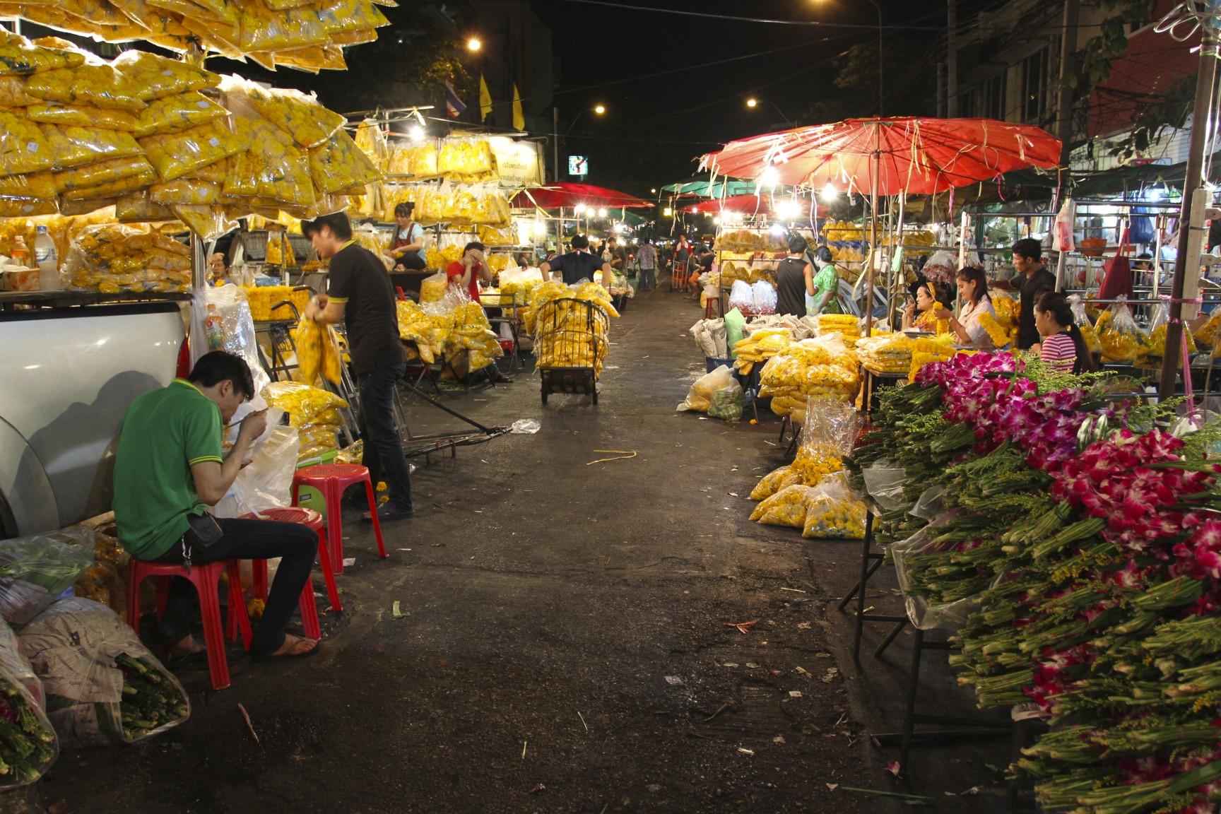Flower power at Pak Khlong Talat  notesfromcamelidcountry