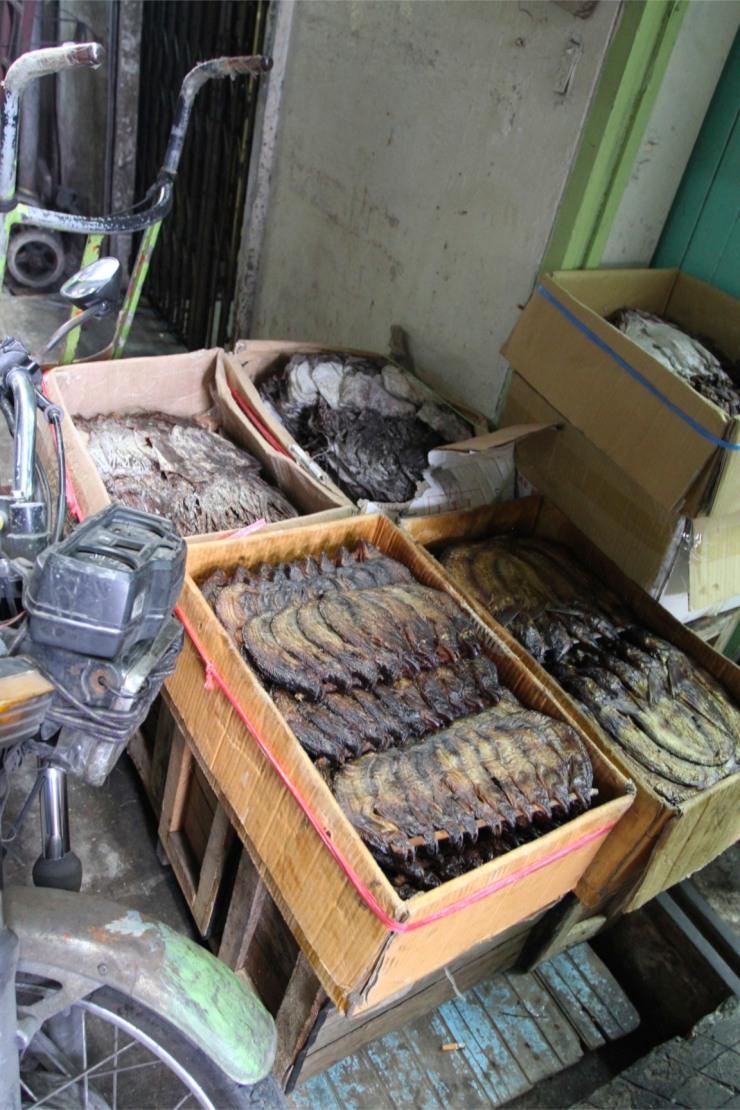 Dried fish, Chinatown, Bangkok, Thailand