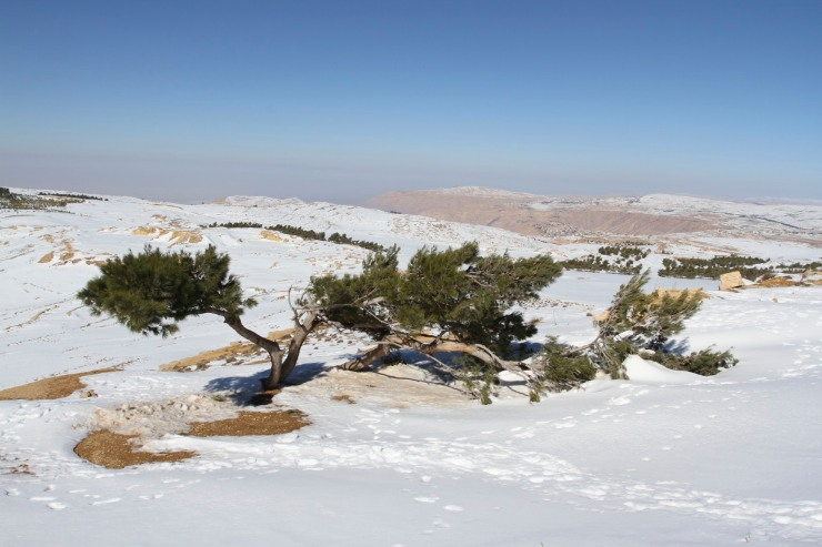 Snow in the mountains between the Dead Sea and Petra, Jordan