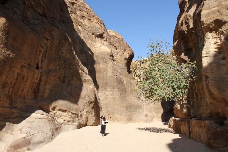 Bedouin girl in the Siq canyon, Petra, Jordan