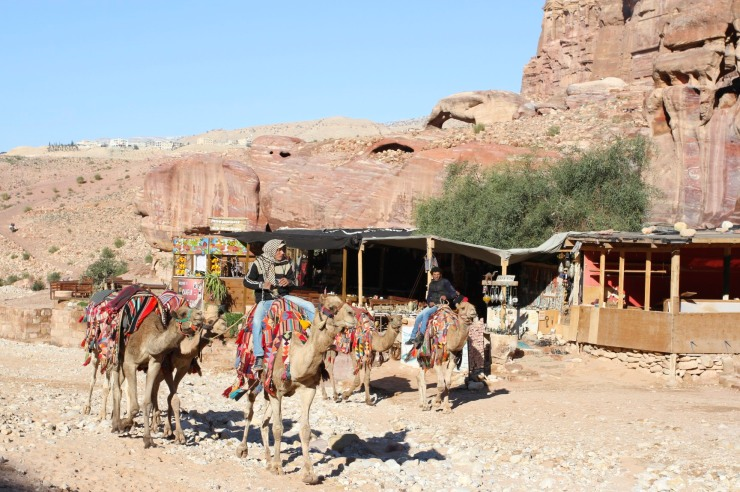 Bedouin and camels, Petra, Jordan