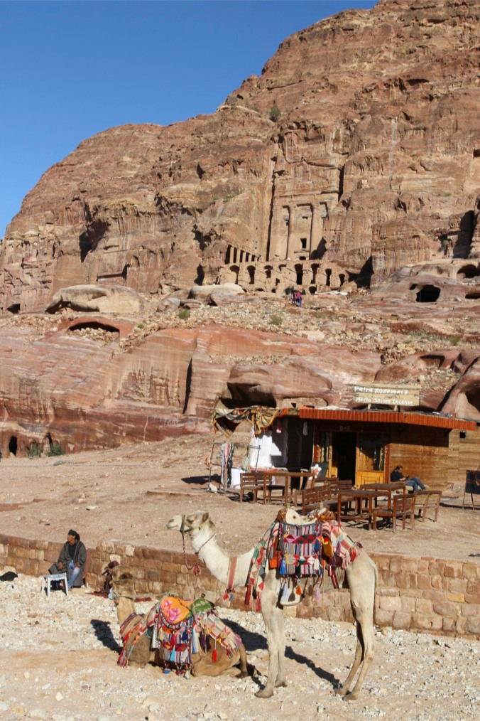 Royal Tombs and camels, Petra, Jordan