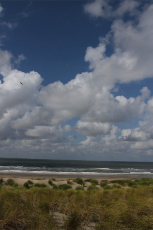 North Sea beach in The Netherlands