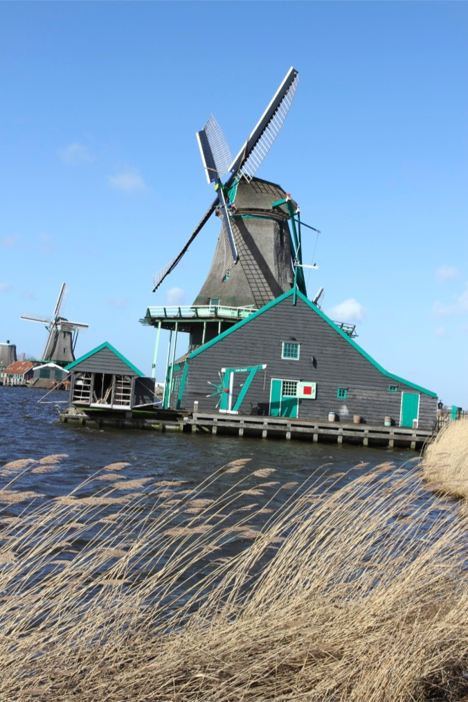 The Cat, working windmill of Zaanse Schans, The Netherlands