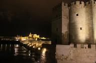 Mezquita and Roman Bridge at night, Cordoba, Andalusia, Spain