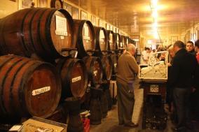 Sherry bar, Malaga, Andalusia, Spain