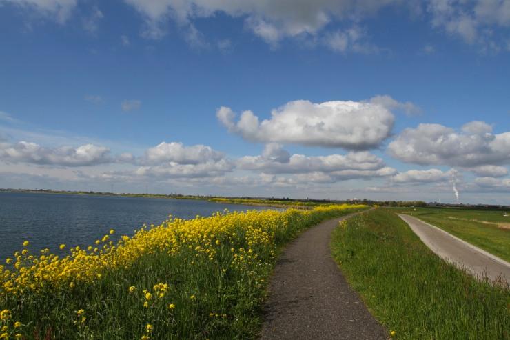 Cycle path along the IJsselmeer, Waterlands, Netherlands