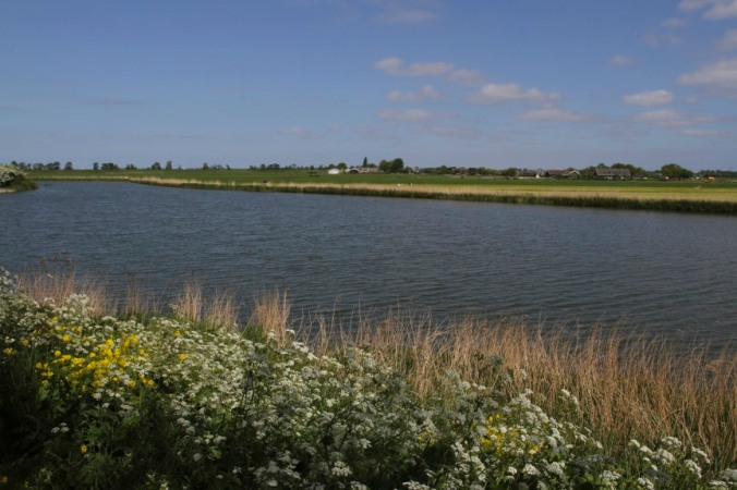 River Vecht on the way to Weesp, Netherlands