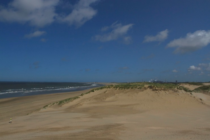 Zuid-Kennemerland National Park, North Sea Coast, Netherlands