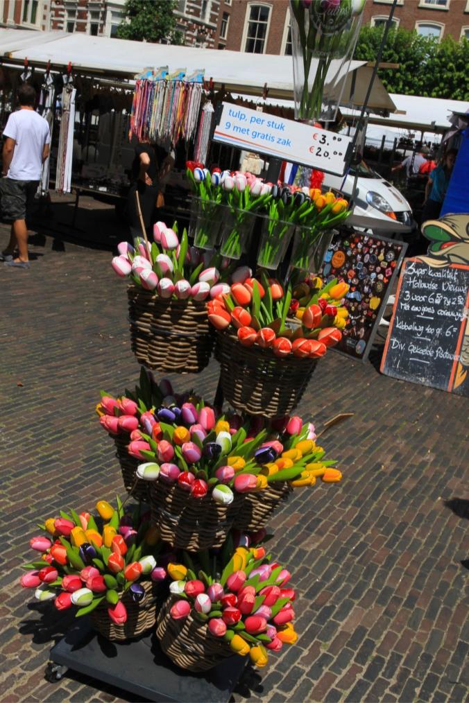 Tulips, Haarlem, Netherlands