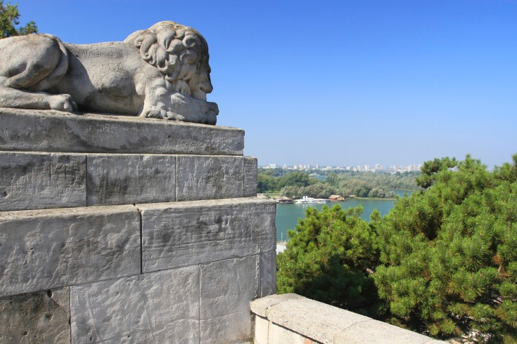 Lion and Sava river, Kalemegdan Fortress, Belgrade, Serbia