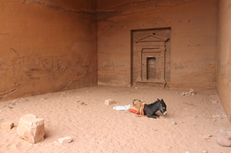 Sheltering in a tomb with a donkey, the Monastery or El Deir, Petra, Jordan