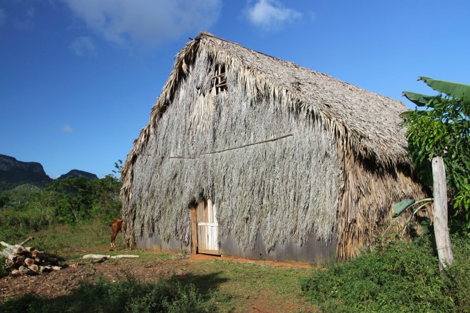 Tobacco drying hut, Valle de Silencio, Vinales