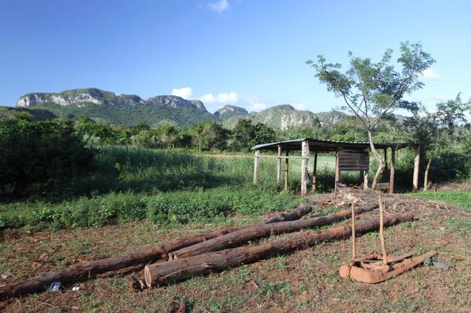Plough, Valle de Silencio, Vinales
