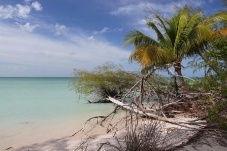 Cayo Jutias, Cuba