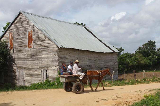 Robaina cigar plantation, Pinar del Rio, Cuba